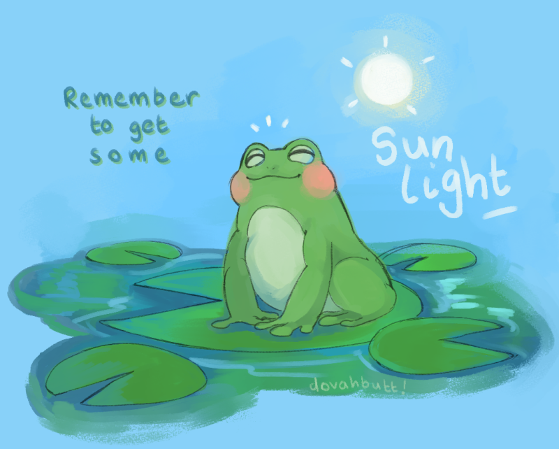 sun froge